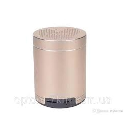 Портативные колонки PTH-501 Small Speaker